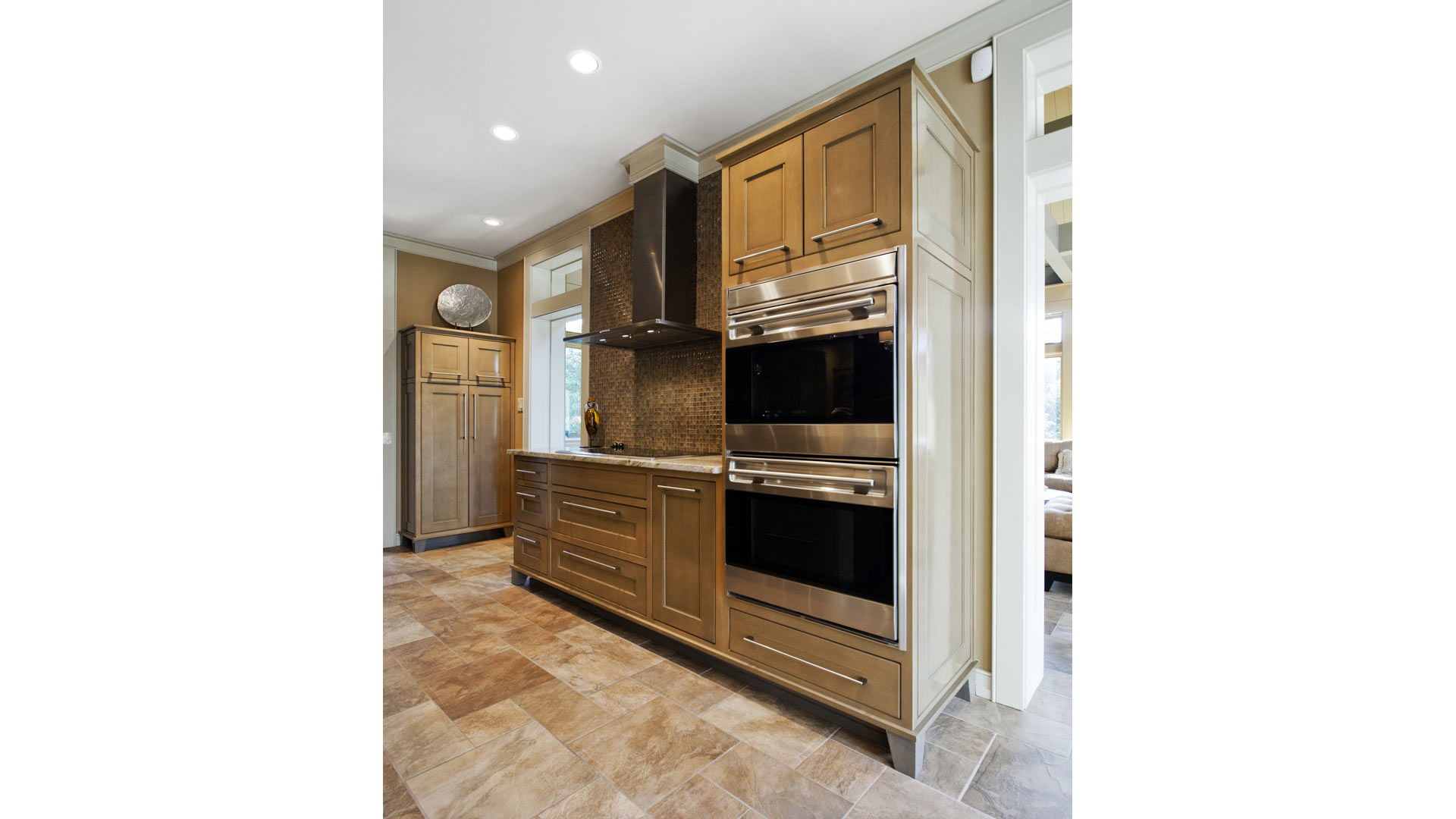 New kitchen details (stainless steel appliances and custom cabinetry) - Kitchen and Family Room Addition - Indianapolis, IN