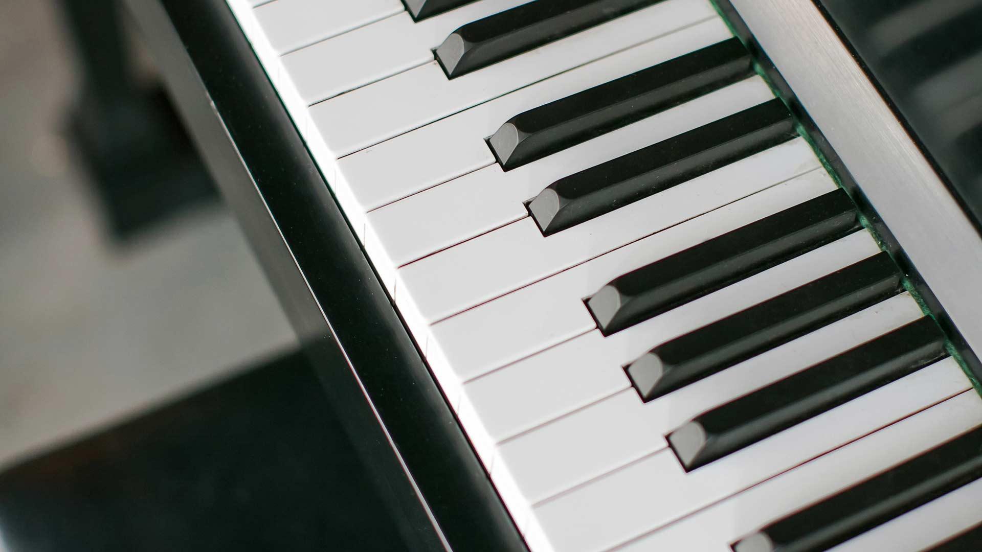 Piano Keys - Humidor - Midcentury Modern Addition - Brendonwood, Indianapolis